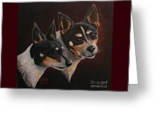Radar And Ginger Greeting Card