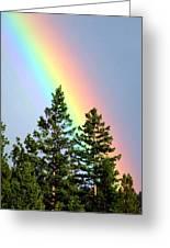 Radiant Rainbow Greeting Card