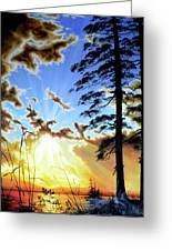 Radiant Reflection Greeting Card by Hanne Lore Koehler