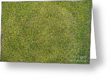 Radiation With Green With Yellow Greeting Card