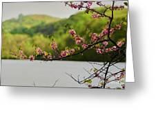 Radner Lake During The Spring Greeting Card