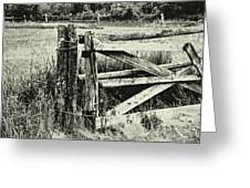 Rail Fence Greeting Card