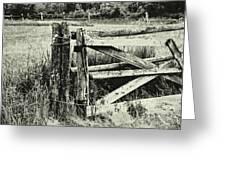 Rail Fence Greeting Card