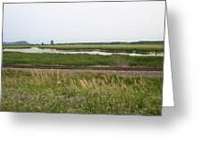 Rail Refuge Greeting Card