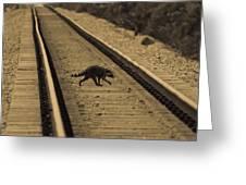 Railroad Bandit Greeting Card
