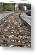 Railroad Tracks Greeting Card by Danielle Allard