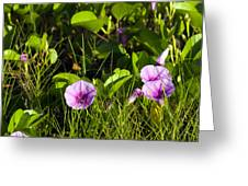 Railroad Vine Greeting Card