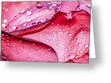Rain Drop Jewels  Greeting Card