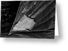 Rain Drops 29 Leaves Greeting Card