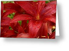 Rain Drops Keep Falling On My Head Greeting Card
