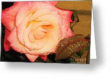 Rain Flower Rose Greeting Card
