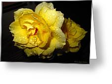 Rain Soaked Yellow Rose Greeting Card