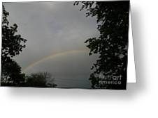 Rainbow Between The Trees Greeting Card