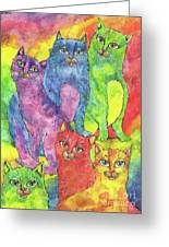 Rainbow Cats 2017 07 01 Greeting Card
