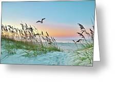 Rainbow Dune Greeting Card