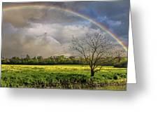 Rainbow Field Greeting Card