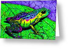 Rainbow Frog 2 Greeting Card