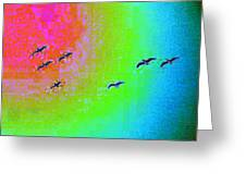 Rainbow Gulls Greeting Card