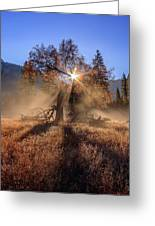 Rainbow In Yosemite Valley Ice Fog Greeting Card