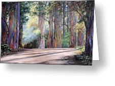 Rainbow Lane Greeting Card
