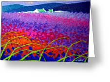 Rainbow Meadow Greeting Card by John  Nolan