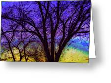 Rainbow Morning Greeting Card by Julie Lueders