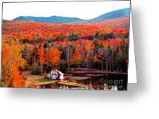 Rainbow Of Autumn Colors Greeting Card