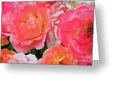 Rainbow Of Roses Greeting Card