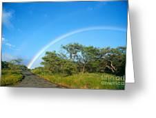 Rainbow Over Treetops Greeting Card
