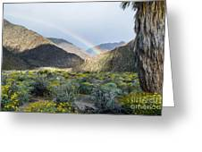 Rainbow Palm Greeting Card