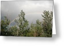 Rainbow Past The Treeline Greeting Card