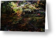 Rainbow Pickle Creek Reflections 6272 H_3 Greeting Card