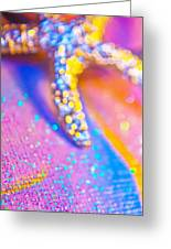 Rainbow Spell And Starfish Greeting Card