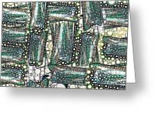 Rainbow Trout Thingies Greeting Card by Ron Bissett