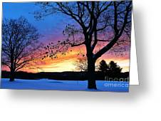 Rainbowed Sunrise Greeting Card