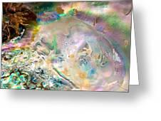 Rainbows And Seaweed Greeting Card