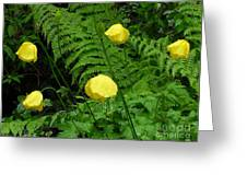 Raindrops On Yellow And Green Greeting Card