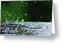 Raindrops Rejuvinate Greeting Card