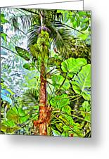Rainforest Green Greeting Card