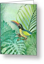 Rainforest Tropical - Tropical Toucan W Philodendron Elephant Ear And Palm Leaves Greeting Card