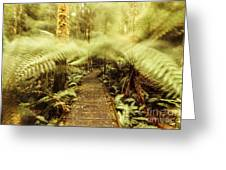 Rainforest Walk Greeting Card