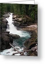 Rainier Waterfall Greeting Card