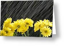 Raining On Yellow Daisies Greeting Card