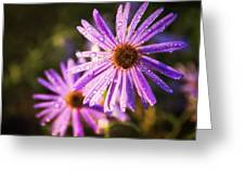 Rainy Day Flowers Greeting Card