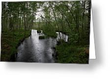 Rainy River. Koirajoki Greeting Card