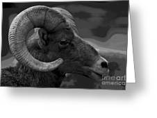 Ram Greeting Card by Barbara Schultheis