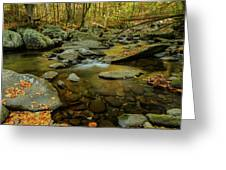 Ramsey Cascades Trailhead Greeting Card