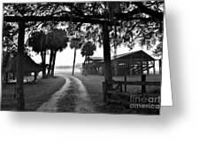 Ranch Life Bw Greeting Card