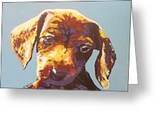 Random Dog Number 1 Greeting Card
