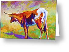Range Rover II - Texas Longhorn Greeting Card by Marion Rose